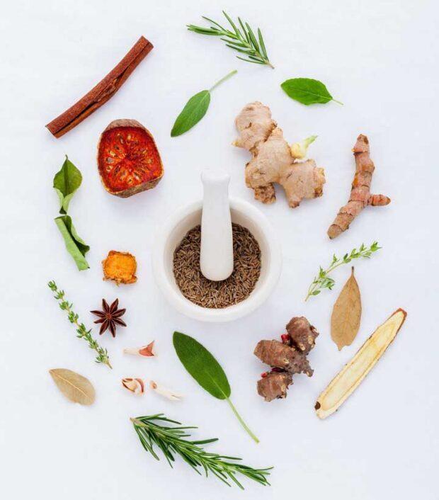 13 Natural Herbs That Can Stimulate Hair Growth