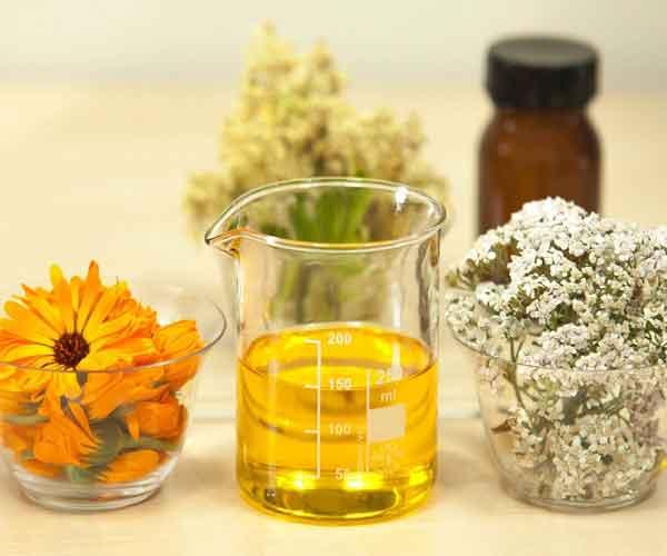 Jojoba Oil - 13 Natural Herbs That Can Stimulate Hair Growth